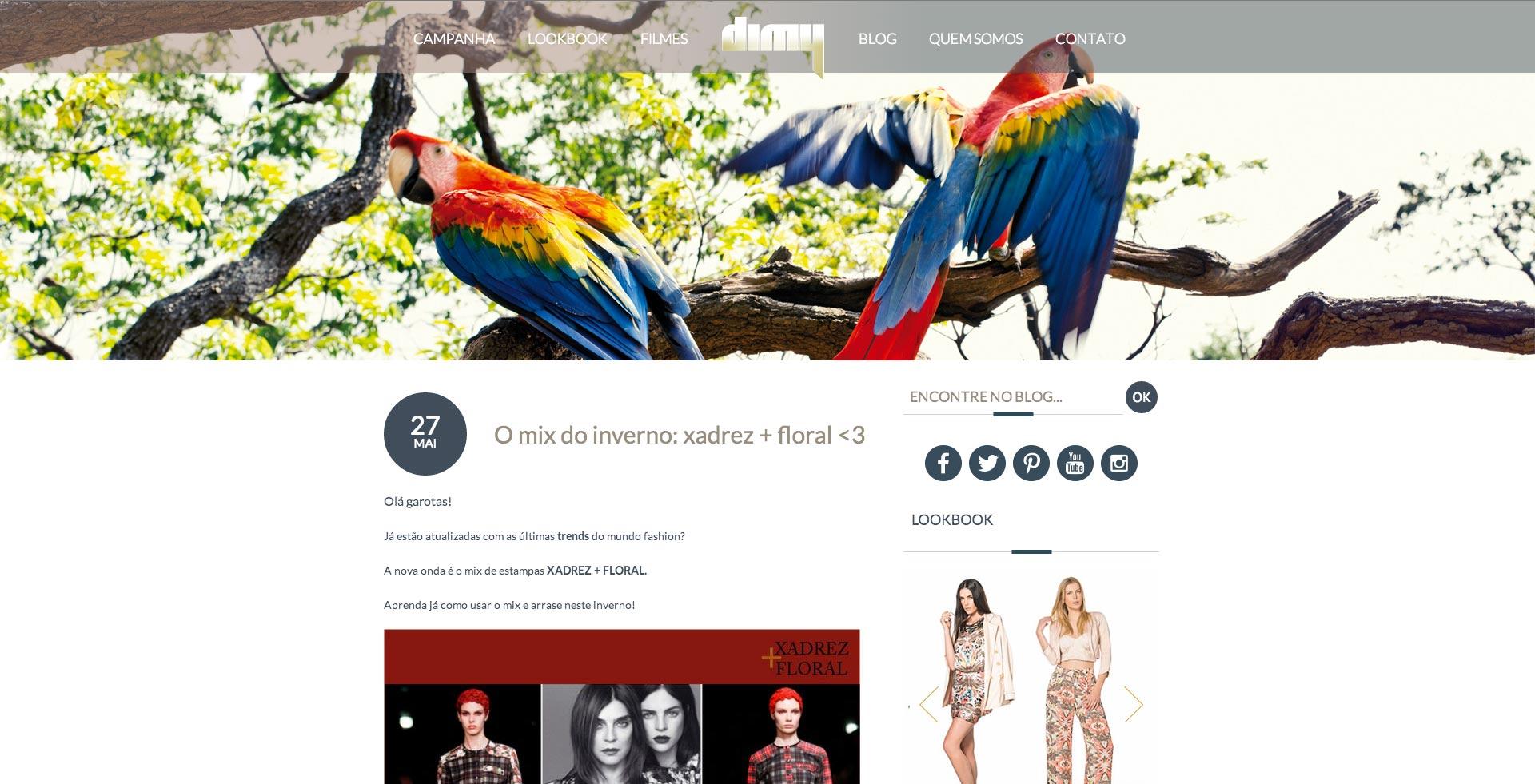 Dimy - Blog